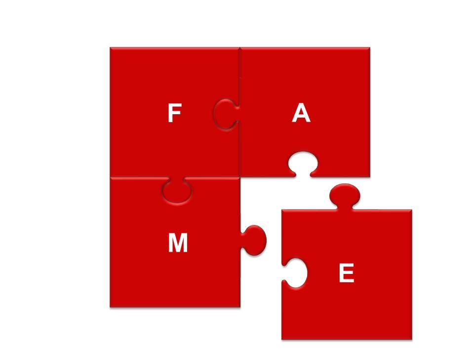 FAME Jigsaw
